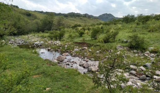 Alpatauca (encuentro 1)