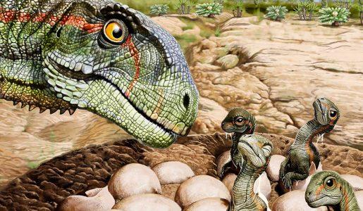 Los huevos de los primeros dinosaurios