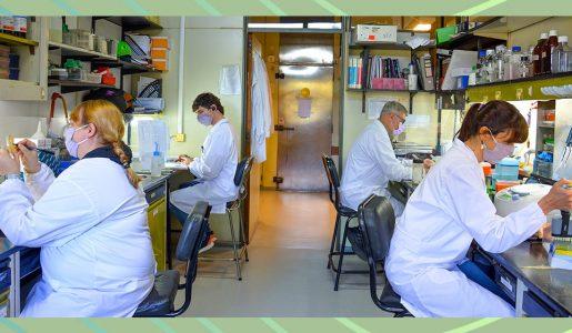 Vacuna argentina en desarrollo neutraliza variantes del virus